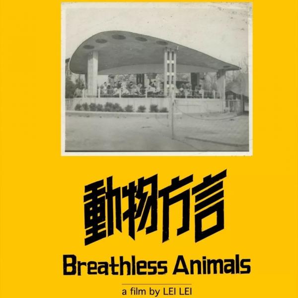 回家的列车启动时,雷磊的新作《动物方言》入选了柏林电影节