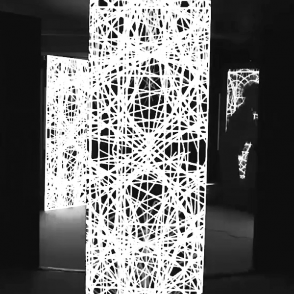 每周之星014 | 分号 C 团队想要打破数字化艺术的边界性与排他性