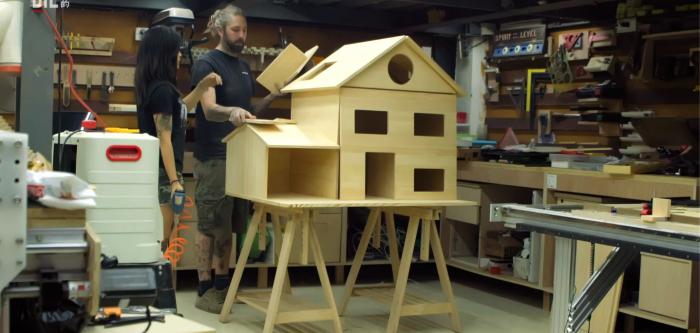 他 们 给 猫 咪 做 别 墅