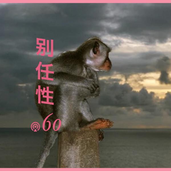 别任性060:冥想就是和你大脑里的猴子一起看云彩
