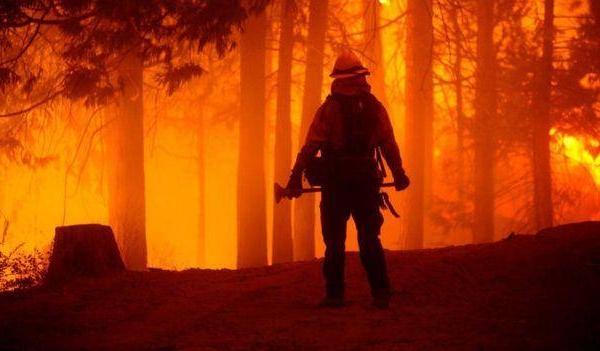 别的简报|官方称加州大火是由一个宝宝性别揭晓派对引发的