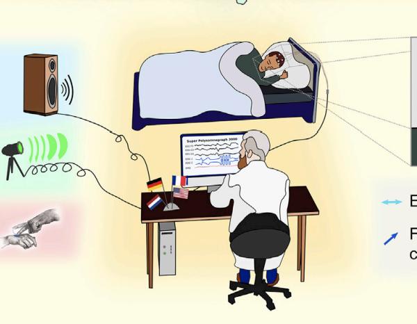 别的简报|科学家现在能与人在梦境中实时交流了