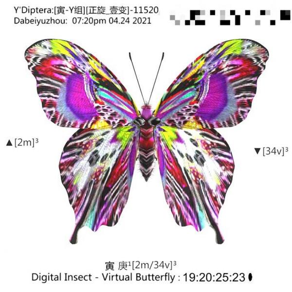 如何在互联网上发起一场蝴蝶效应 ?